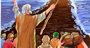 Le prophète Moïse (Moussa)